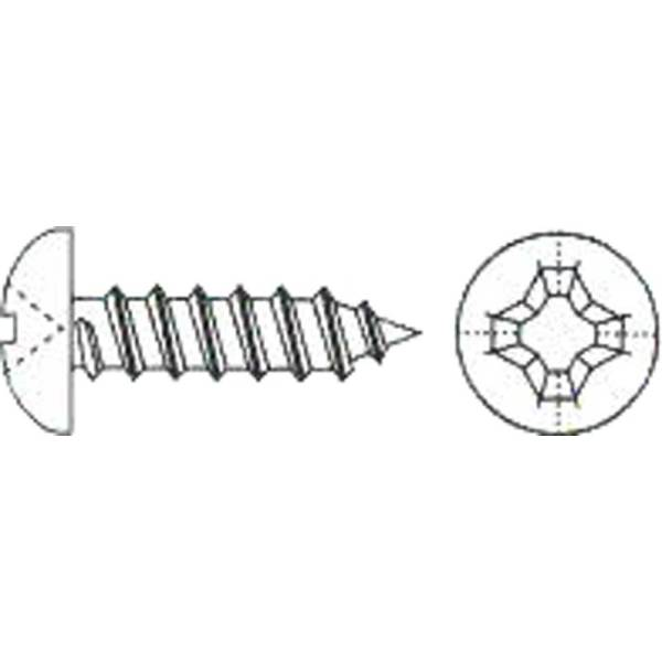 DIN7981 Blechschraube A2 oder verzinkt verschiedene Größen
